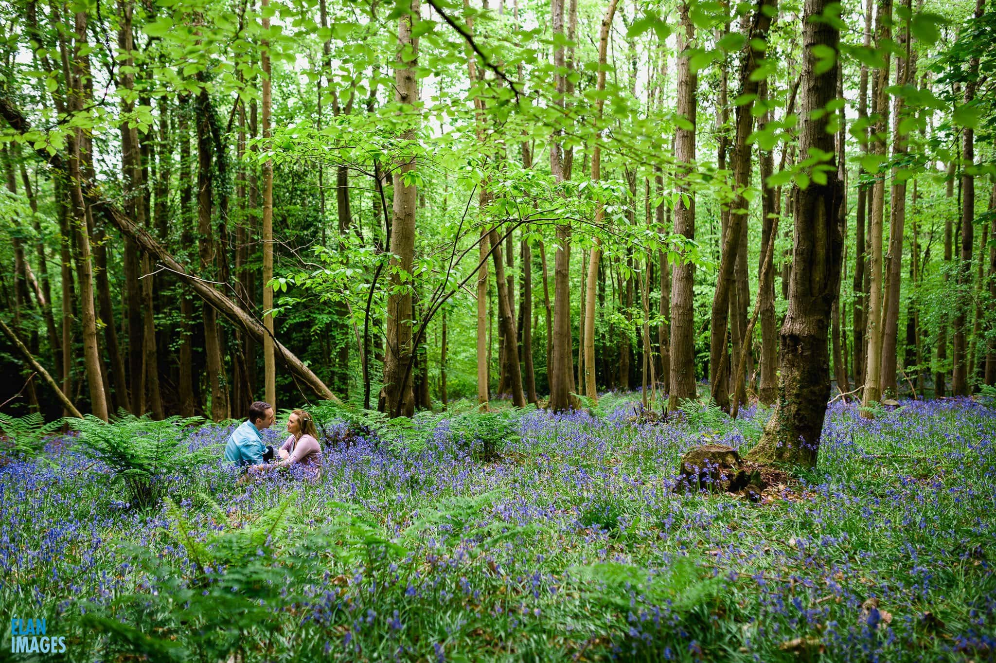 Engagement Photo Shoot in the Bluebell Woods near Bristol 21