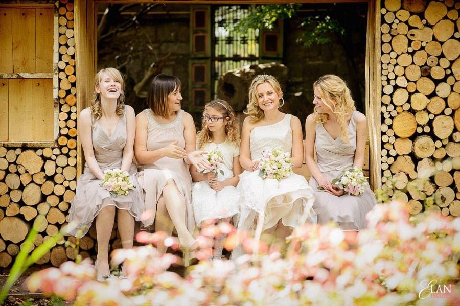 Autumn Wedding at Bristol Zoo 100