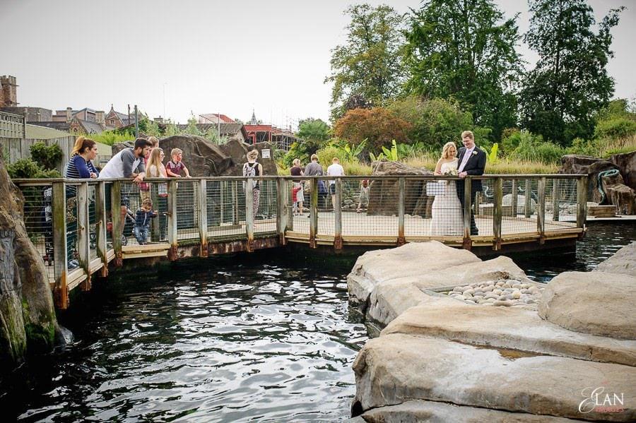 Autumn Wedding at Bristol Zoo 109