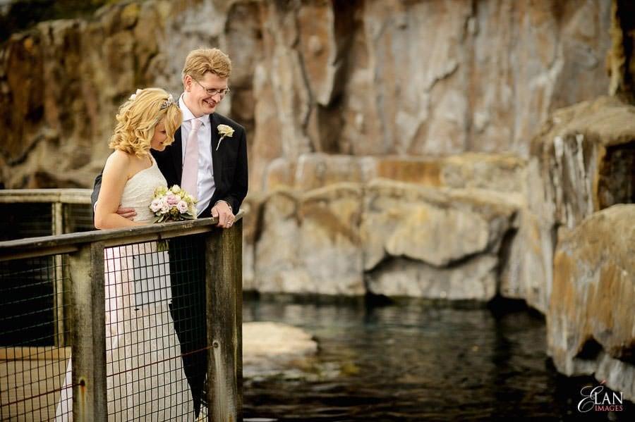 Autumn Wedding at Bristol Zoo 110