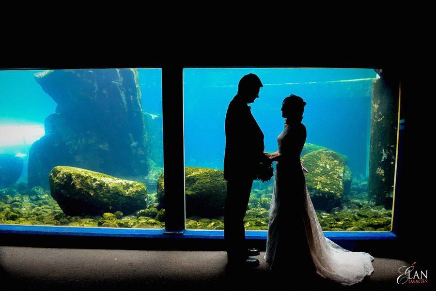 Autumn Wedding at Bristol Zoo 113