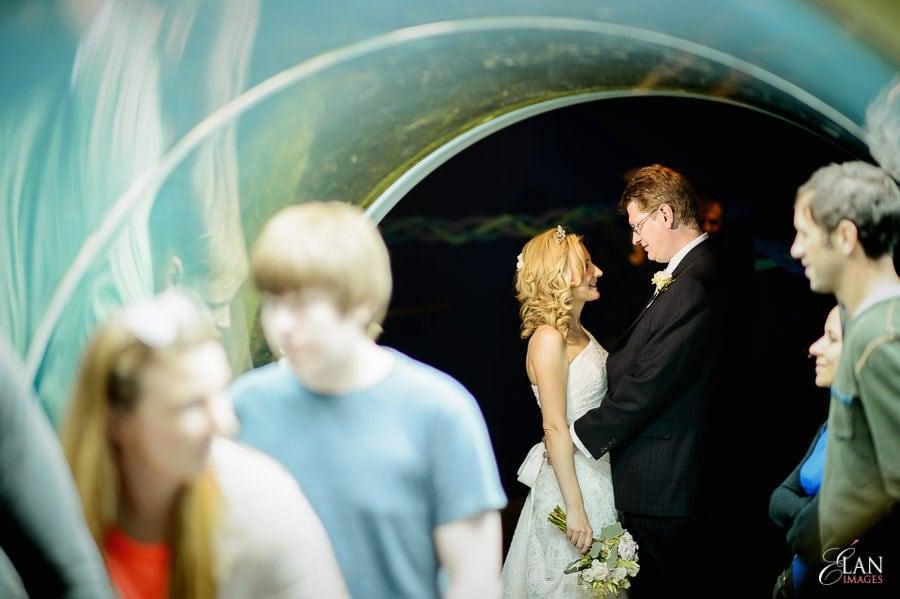 Autumn Wedding at Bristol Zoo 114