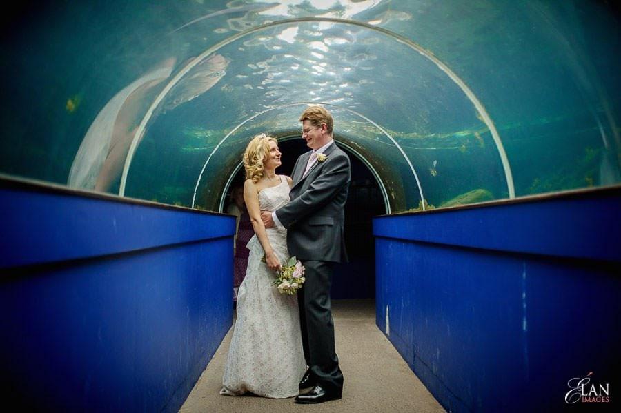 Autumn Wedding at Bristol Zoo 115