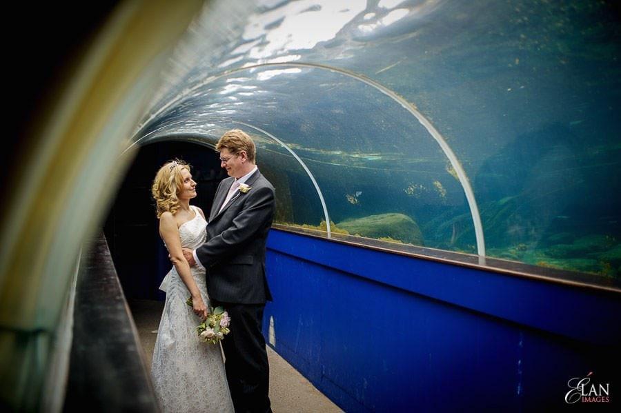 Autumn Wedding at Bristol Zoo 116