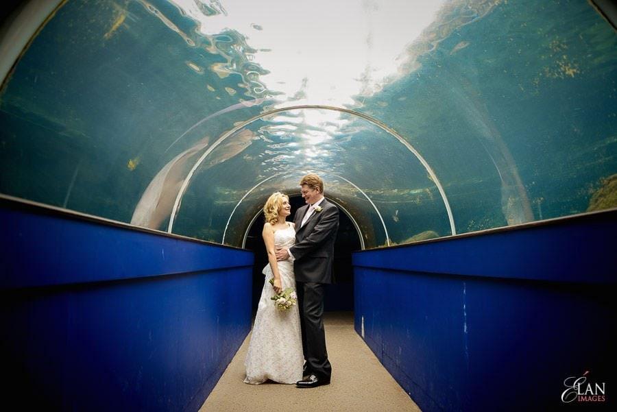 Autumn Wedding at Bristol Zoo 117