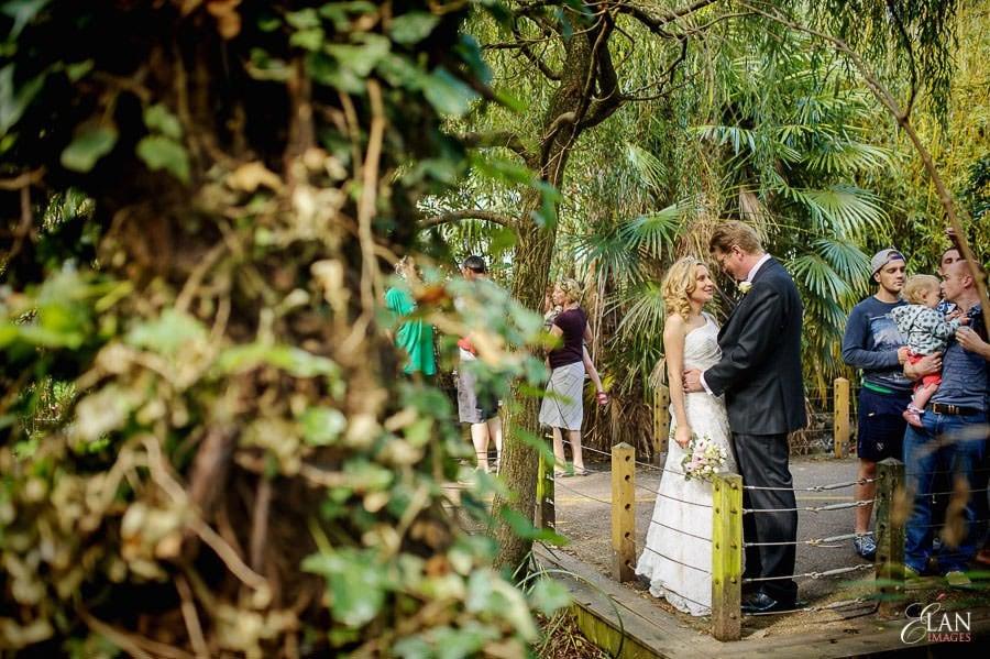 Autumn Wedding at Bristol Zoo 121