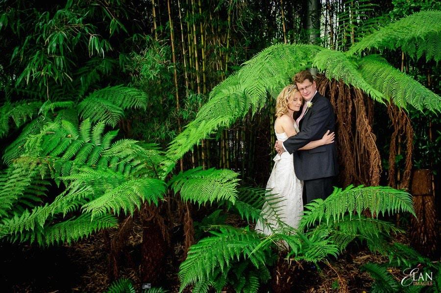 Autumn Wedding at Bristol Zoo 191