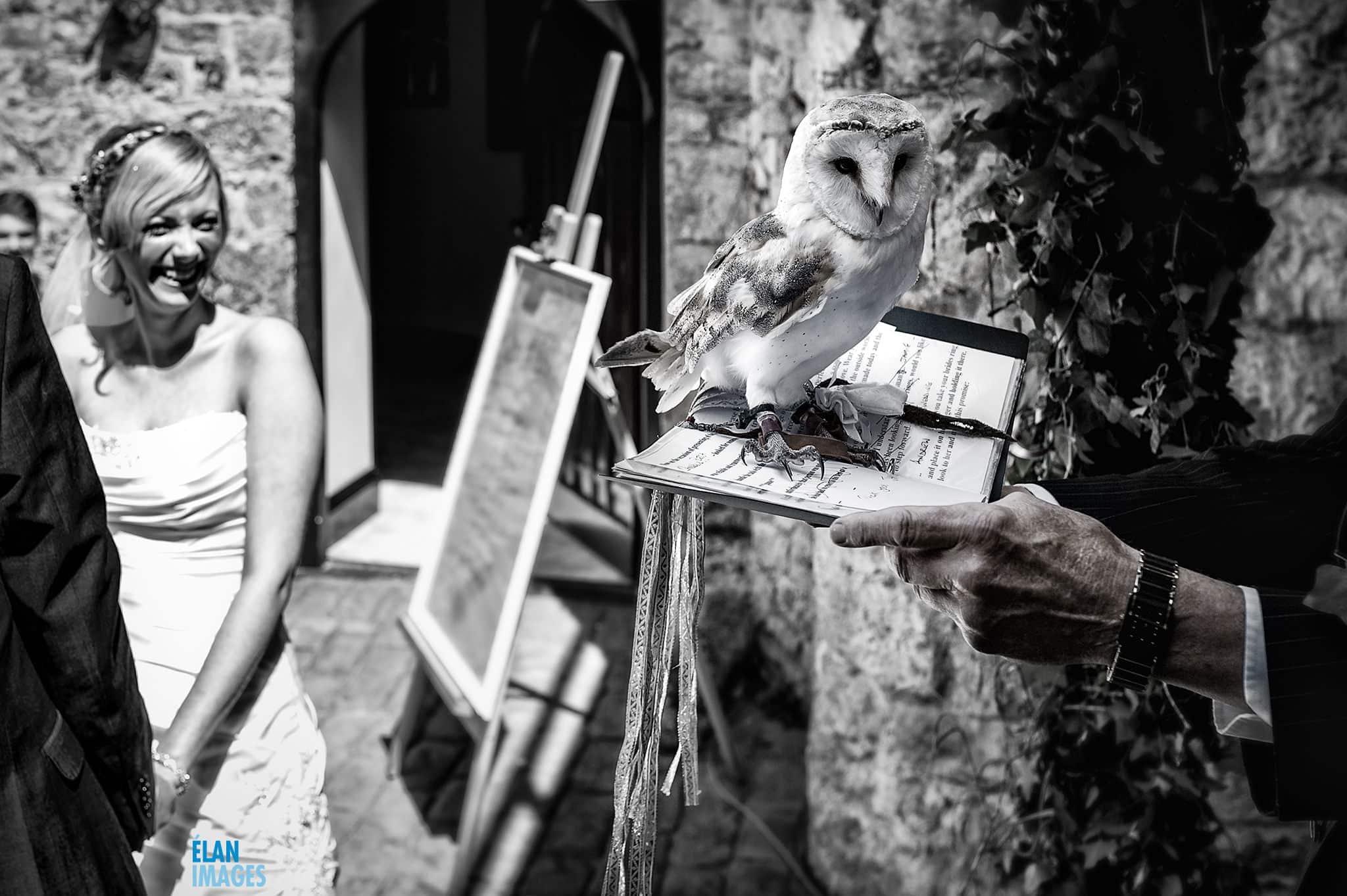 Banwell Castle Wedding-07