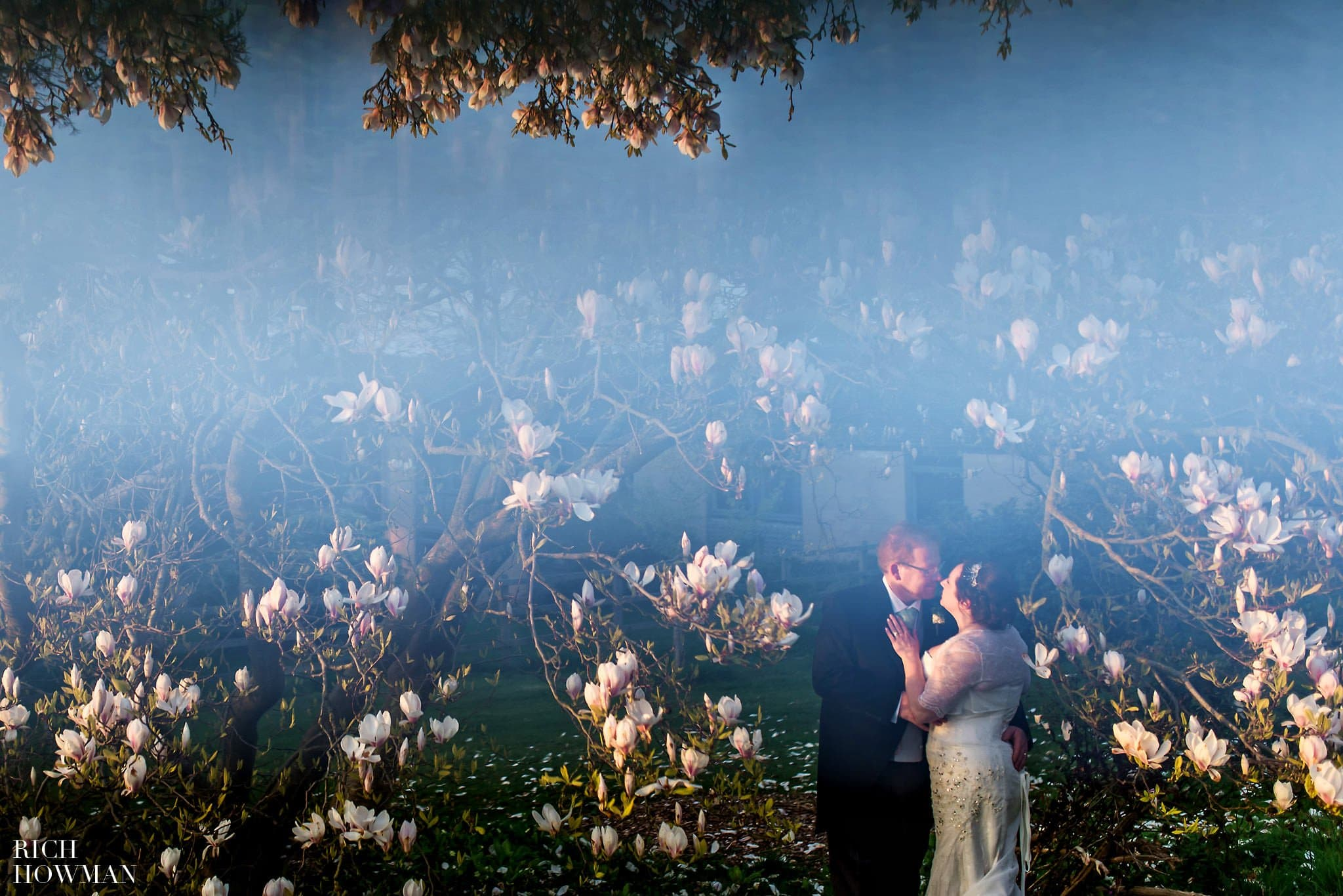 Magnolia tree wedding photo at Coombe Lodge Somerset