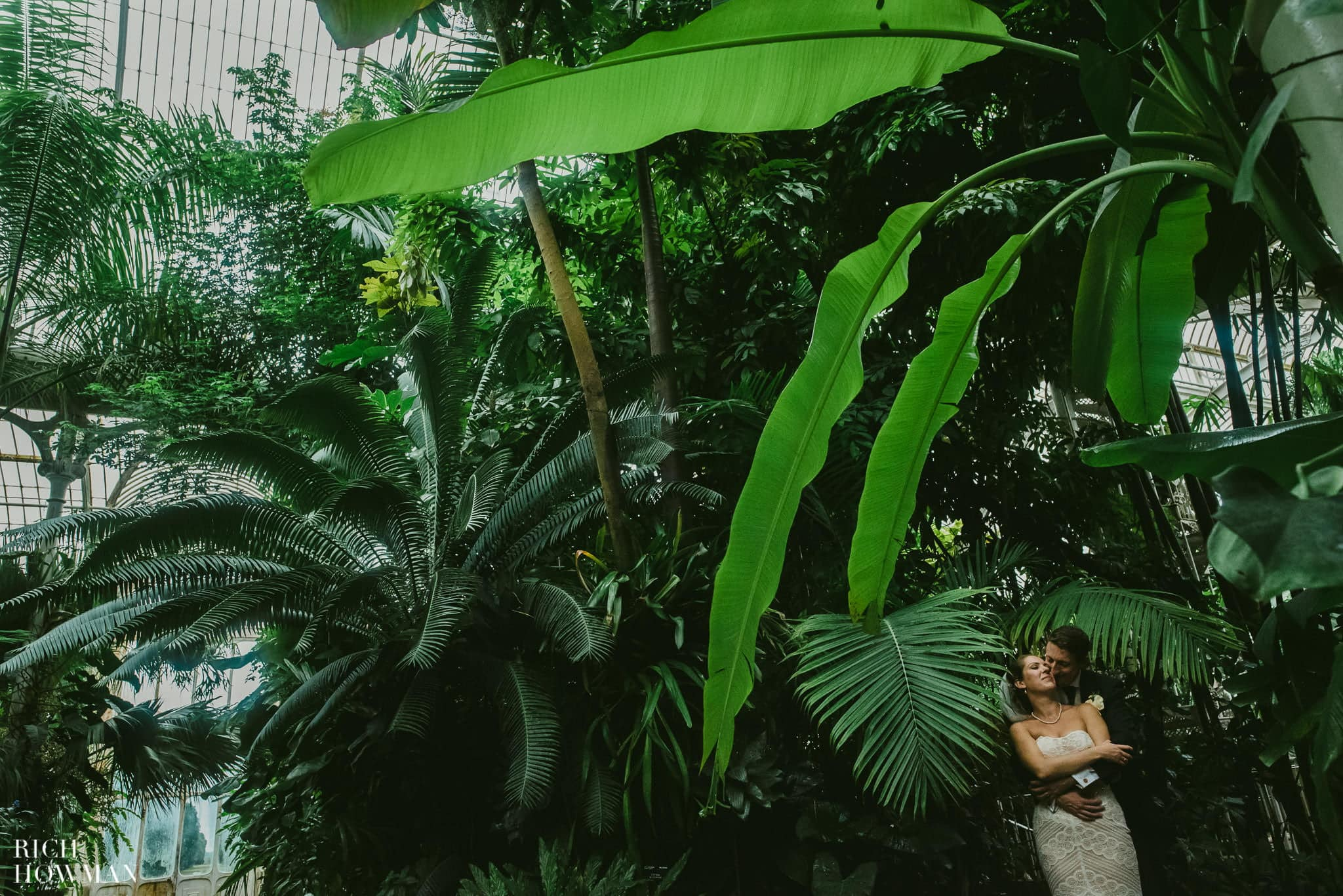 Wedding Photos at Kew Gardens - couple under a huge palm leaf in the Palm House at Kew.