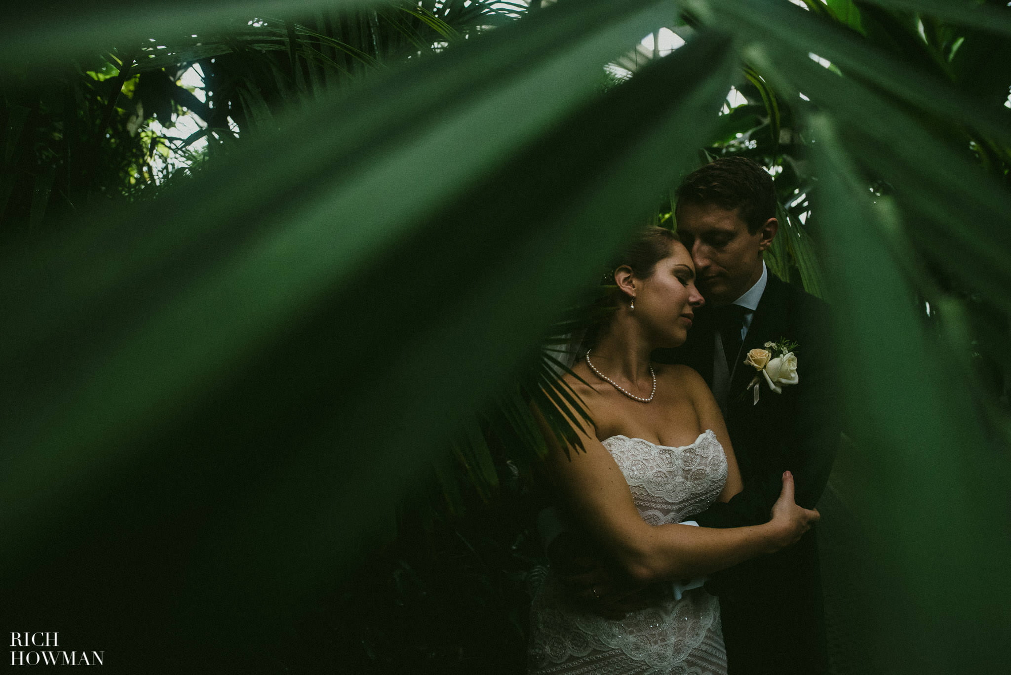 Sneaking a photo through the palm leaves