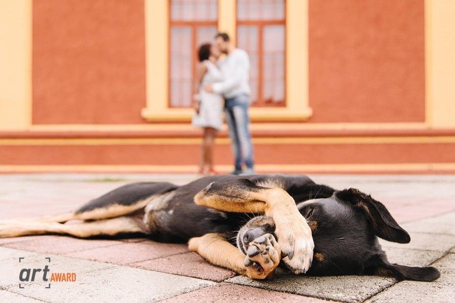 Anderson Crepaldi - Dogs at Wedding Photographer