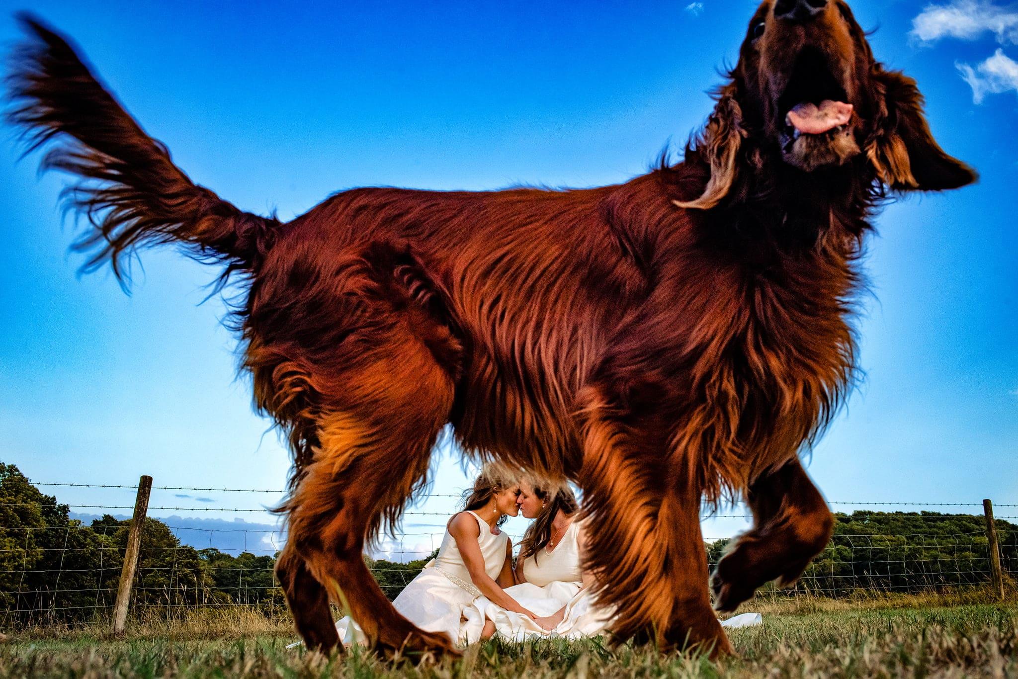 Lesbian Wedding Photographer Bristol UK